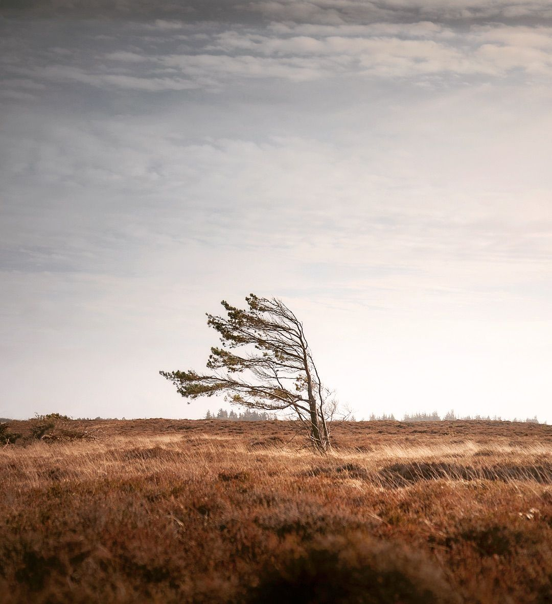 'The Sound Of Silence': Peaceful Landscapes Photography di Claire Droppert